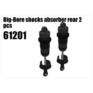 RS5 Modelsport Big-Bore shocks absorber rear 2pcs