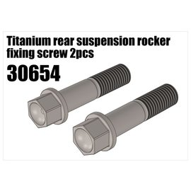 RS5 Modelsport Titanium rear suspension rocker fixing screw