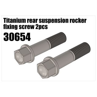 RS5 Modelsport Titanium rear suspension rocker fixing screw 2pcs