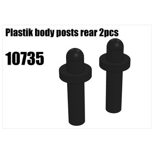 RS5 Modelsport Plastik body posts rear 2pcs