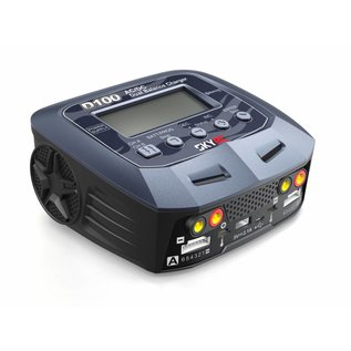 SkyRC SkyRC D100 V2 AC/DC charger