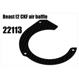 RS5 Modelsport Beast I2 carbon air baffle
