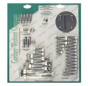 GARDNER-WESTCOTT conjuntos de tornillo del motor, Allen - Chrome
