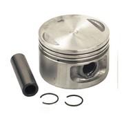 Engine   Sportster XL 1200cc 88-03 Evo pistons
