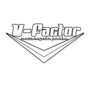 V-Factor