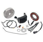 Cycle Electric Opladen van 3-fase 38A UPGRADE-kits - HD 84-06