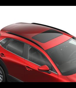 Mazda CX - 30 Typ DM Dachreling schwarz