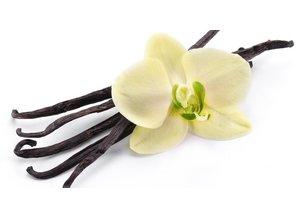 Geurolie Vanille 20 ml - Zelf geurkaarsen - waxmelts maken