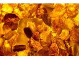 Geurolie Amber 20 ml