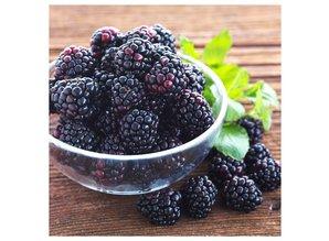The Candleshop Collection Geurolie Wild Blackberry - Zelf geurkaarsen - waxmelts maken