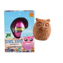 Ei met groeiende uil 12st.