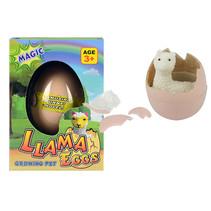 Ei met groeiende Alpaca 12st.