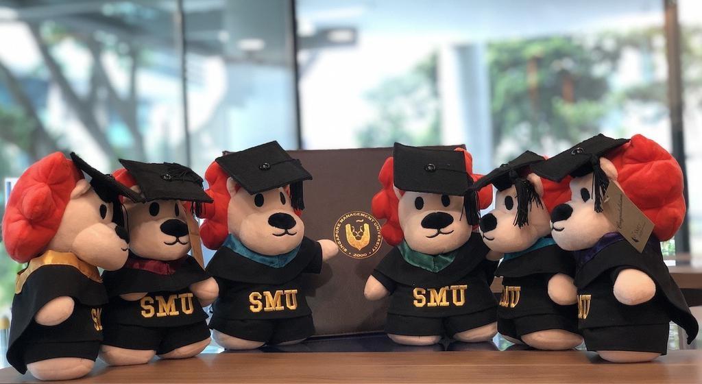 "Graduation Bear Smoo Smoo Graduation Plush 8"", Green"