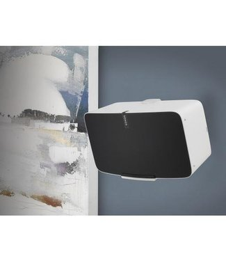 Sonos Play:5 Speaker + Flexson wall mount bundle
