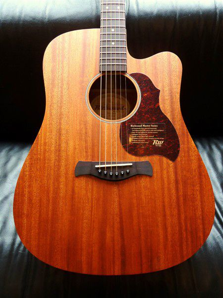 Richwood Richwood D-50CE Dreadnought w/Fishman