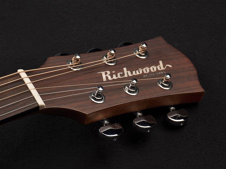 Richwood Richwood D-20 Dreadnought