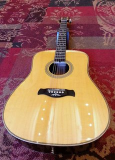 Richwood Richwood DS-65-VA Custom Shop Master Series