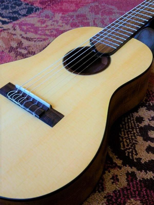 Salvador Cortez Salvador Cortez TC-460 Guitarlele + Bag