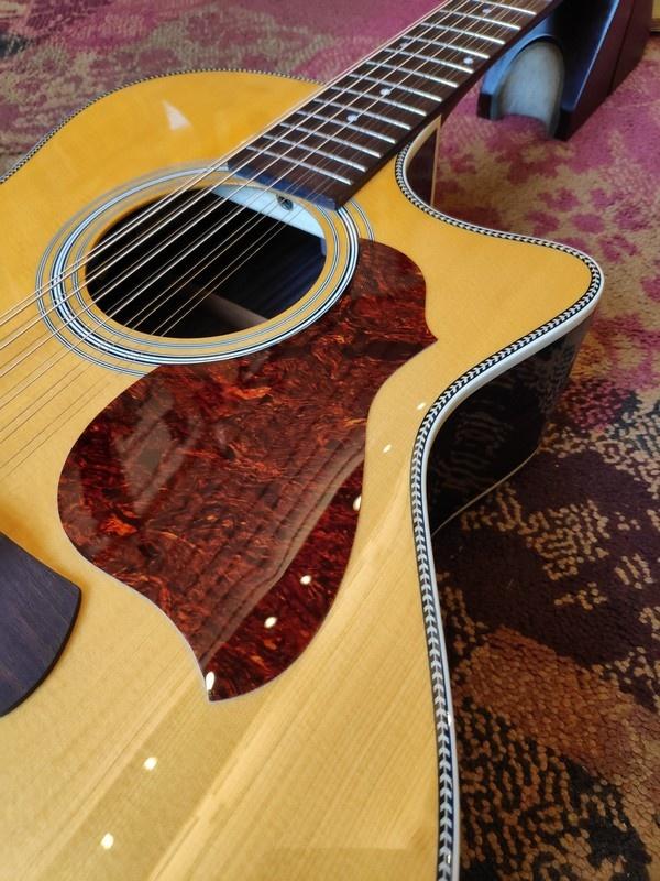 Richwood Richwood G-6512-CEVA 12-string
