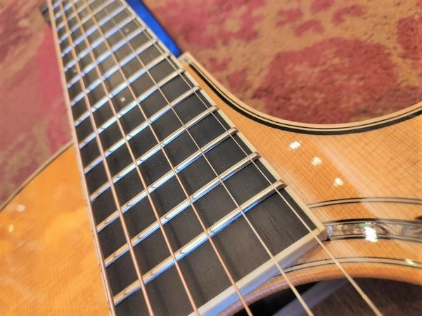 Larrivee 2008 Larrivee LV-05 Select Series