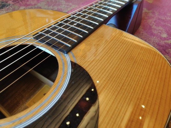 Eastman Eastman E10 D-TC Thermo Cured
