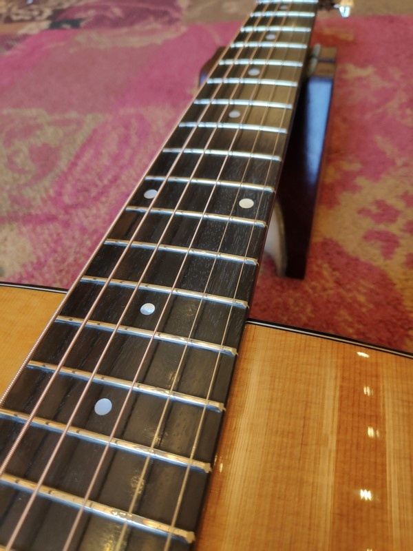 Eastman Eastman E6 OM-TC Thermo Cured