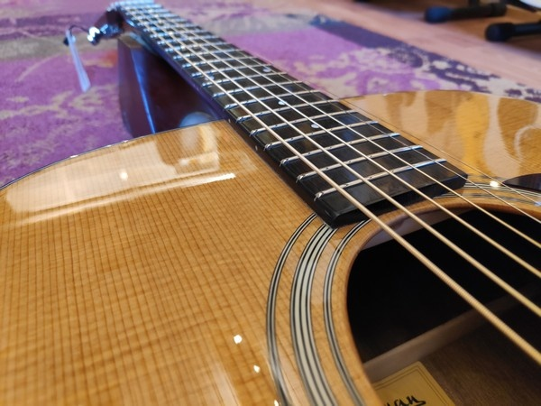 Eastman Eastman E6 D-TC Thermo Cured