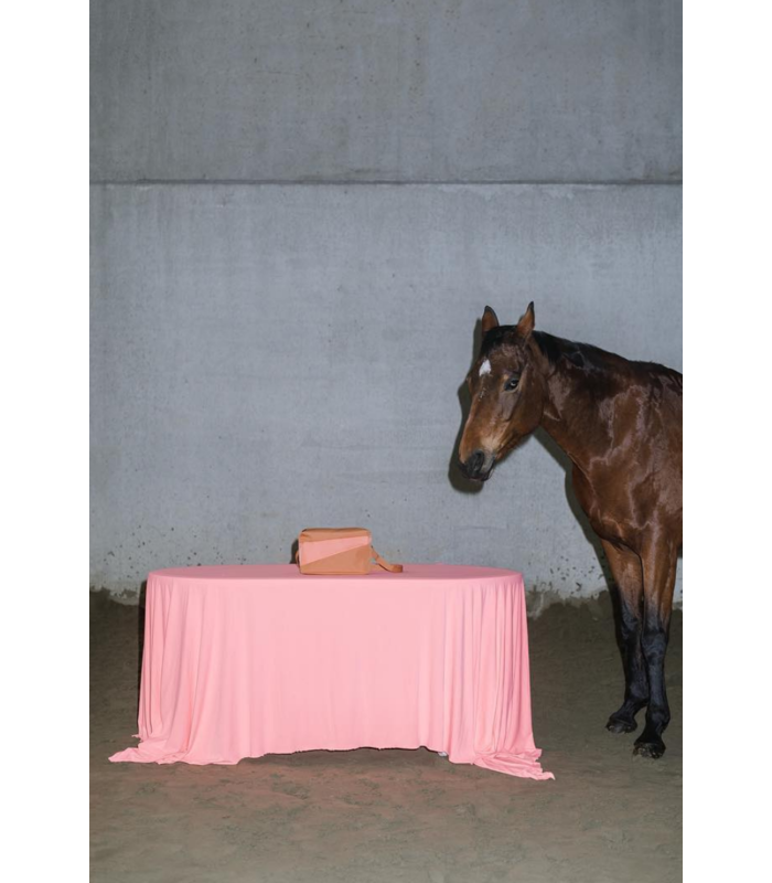 MEDIUM BUM BAG HORSE & LOBSTER
