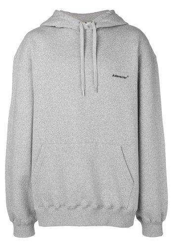ADER ERROR thunder hoodie grey