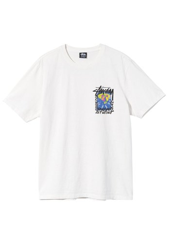 STUSSY camellias pig dyed tee natural