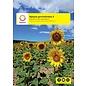 Spaans Gevorderden 2 lesboek + uitwerkingenboekje