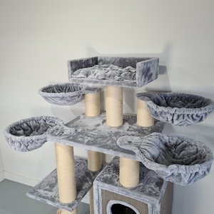 RHRQuality Tiragraffi Cat Paradise Plus Light Grey