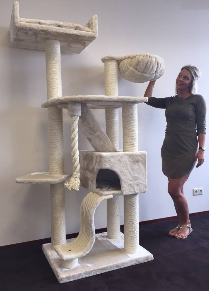 Cat Tree Kilimandjaro De Luxe Cream Rhrquality Com