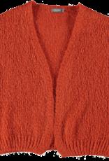 Geisha 14625-70 Cardigan solid oranje Geisha