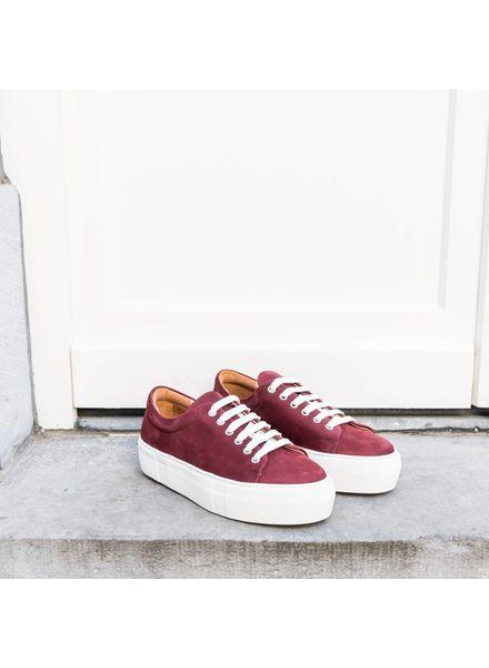 Hope Sam Sneaker - Wine - size 36