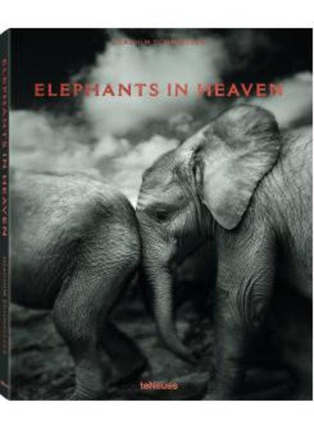 TeNeues Elephants in heaven