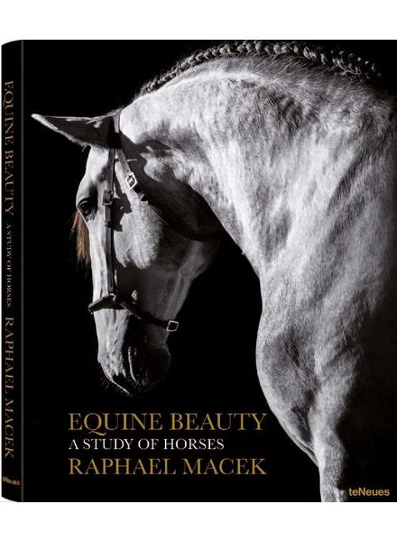 TeNeues Equine Beauty, A study of Horses