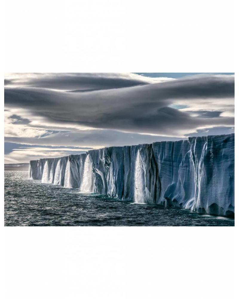 TeNeues Born to Ice by Paul Nicklen