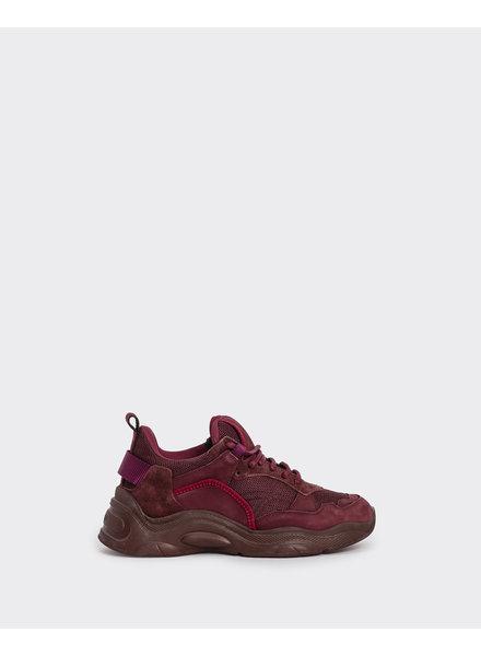 Iro Curverunner sneaker - Burgundy