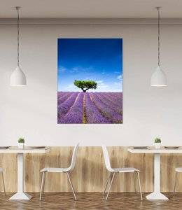 "Sound absorbing panel ""Lavender field"""