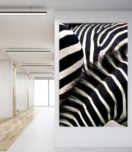 "Akustikbild ""Zebras"""