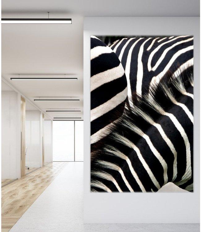 "Akustikbild - Schallabsorber Bild ""Zebras"""