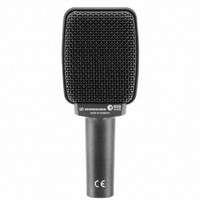 e 609 Silver Dynamic Instrument Microphone