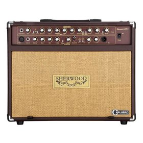 Carlsbro Carlsbro Sherwood 60R Acoustic Guitar Amplifier