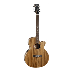 Cort Cort SFX DAO Electro Acoustic