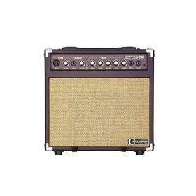 Guitar & Bass Amplifiers