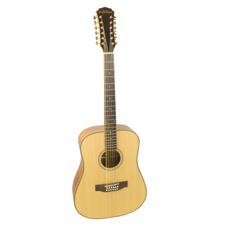 FRESHMAN SONGD12 -  D'nought Acoustic All Solid 12 string