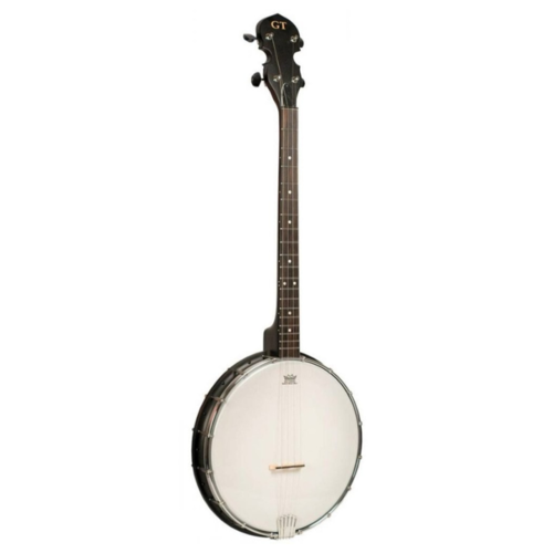Gold Tone Gold Tone AC-4 Open back 4 string Banjo