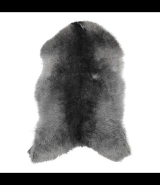 Dyreskinn Schaffell Isländisch dunkelgrau 90-110 cm