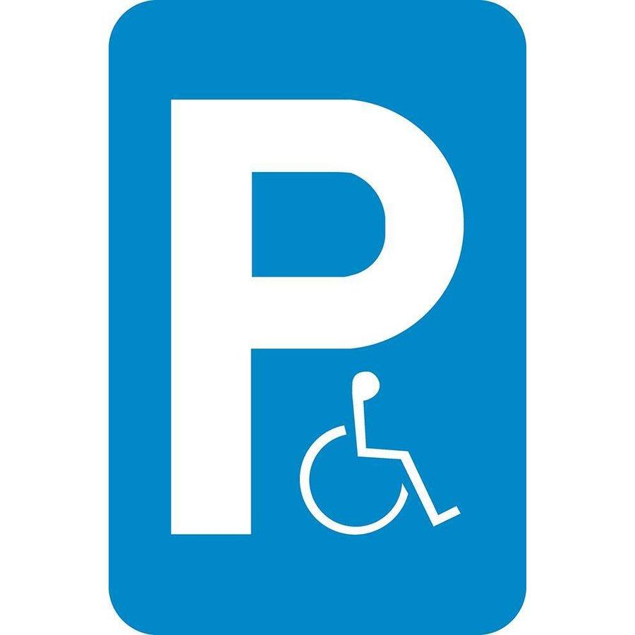 Bord E9a: Parkeren voorbehouden voor voertuigen die gebruikt worden door personen met een handicap.-1